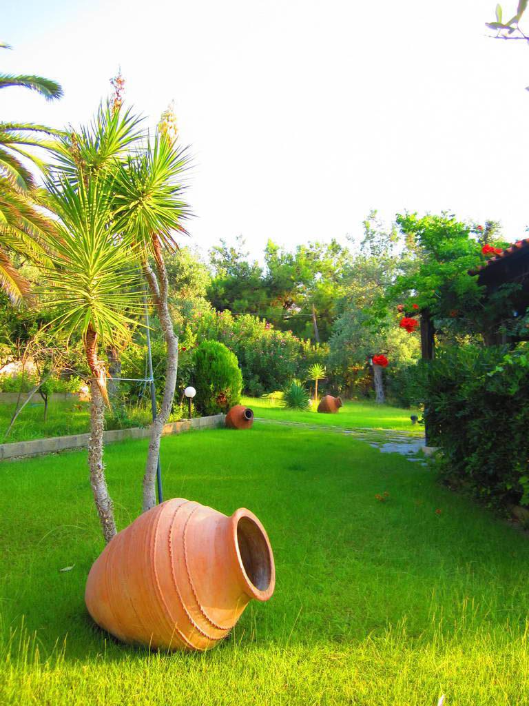 garden-photo2